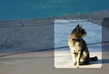 利用File、FileReader、Canvas、Fromdata和Jcrop实现浏览器端图片裁剪和ajax图片上传
